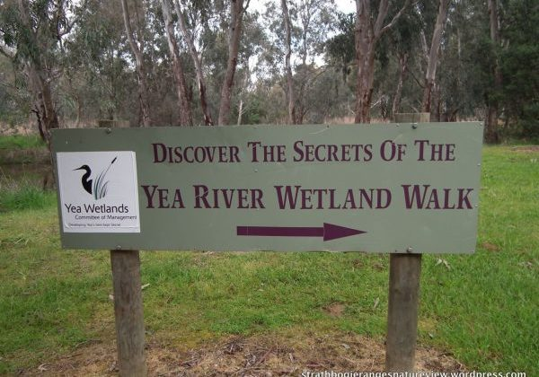yea wetlands sign